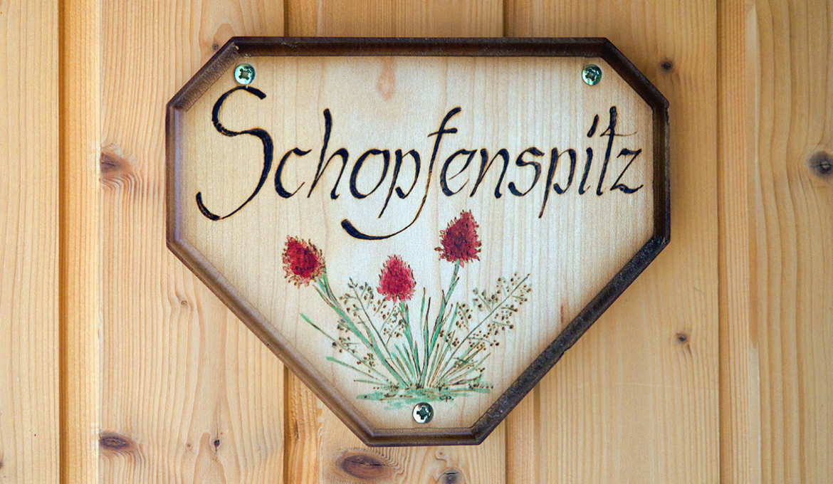 Apartment Schopfenspitz