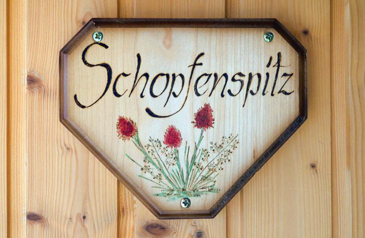 Wohnung Schopfenspitz